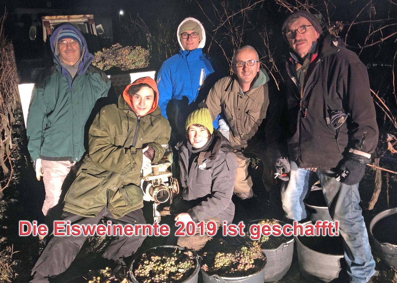 Eiswein 2019 Ernte 12. Dezember